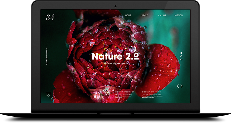 Macbook Nature Interface 2.png