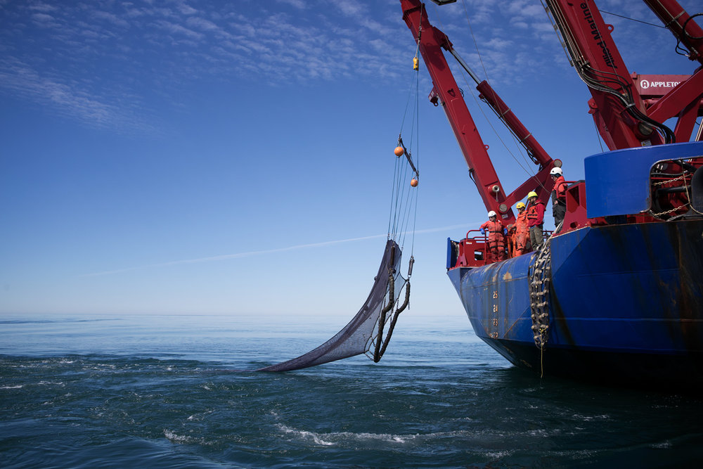 Recovery of the mid-water trawl net. Photographed on a skiff next to Sikuliaq. Photo credit: Brendan Smith