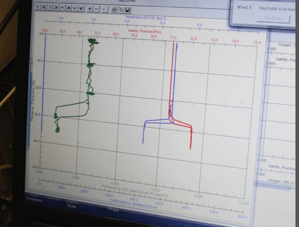 A graph used to tell us what the CTD is sensing as it is lowered down to different depths. Photo credit: Alicia Flores