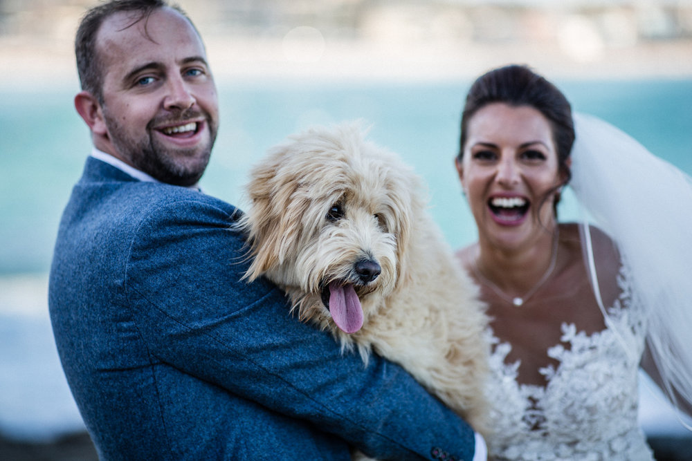 DOG FRIENDLY WEDDING AT MARKS PARK IN BONDI BEACH