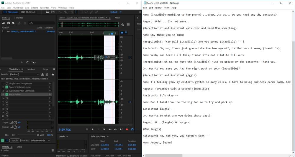 transcription.PNG