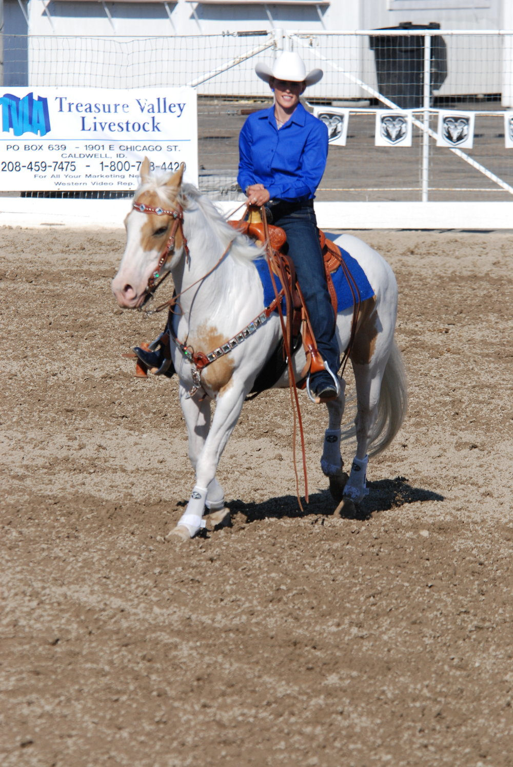 Horsemanship attire is basic, fitted, and creates clean lines. Photo courtesy of  Captured Memories Photography .