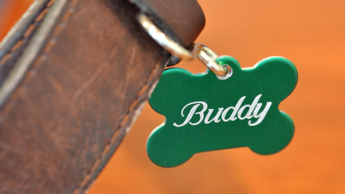 Personalisation of pet tags