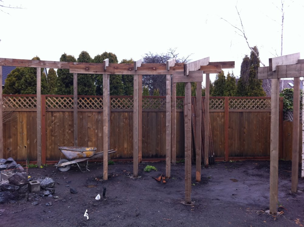 Trellis under construction