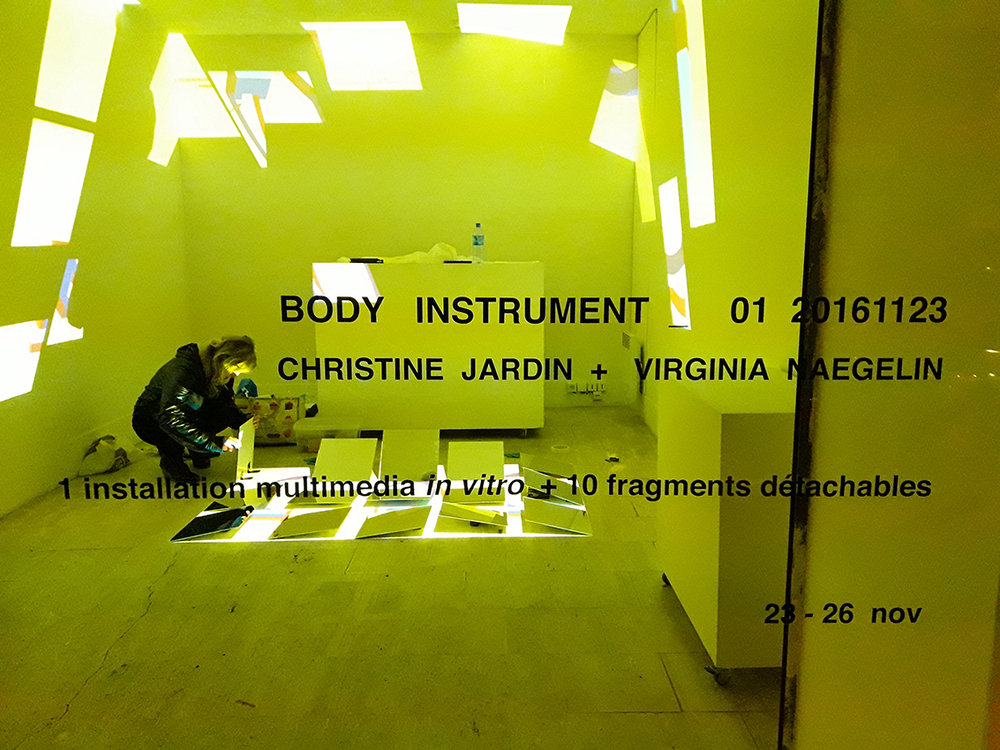 BODY INSTRUMENT _ 01 20161123           | observation of the creature - artwork _ test-emotions | test-tube exhibition _ in vitro _ experimental cube = 36.7392 m3 _ incubation = 77 : 30 _ 2016-11-23 _ Paris