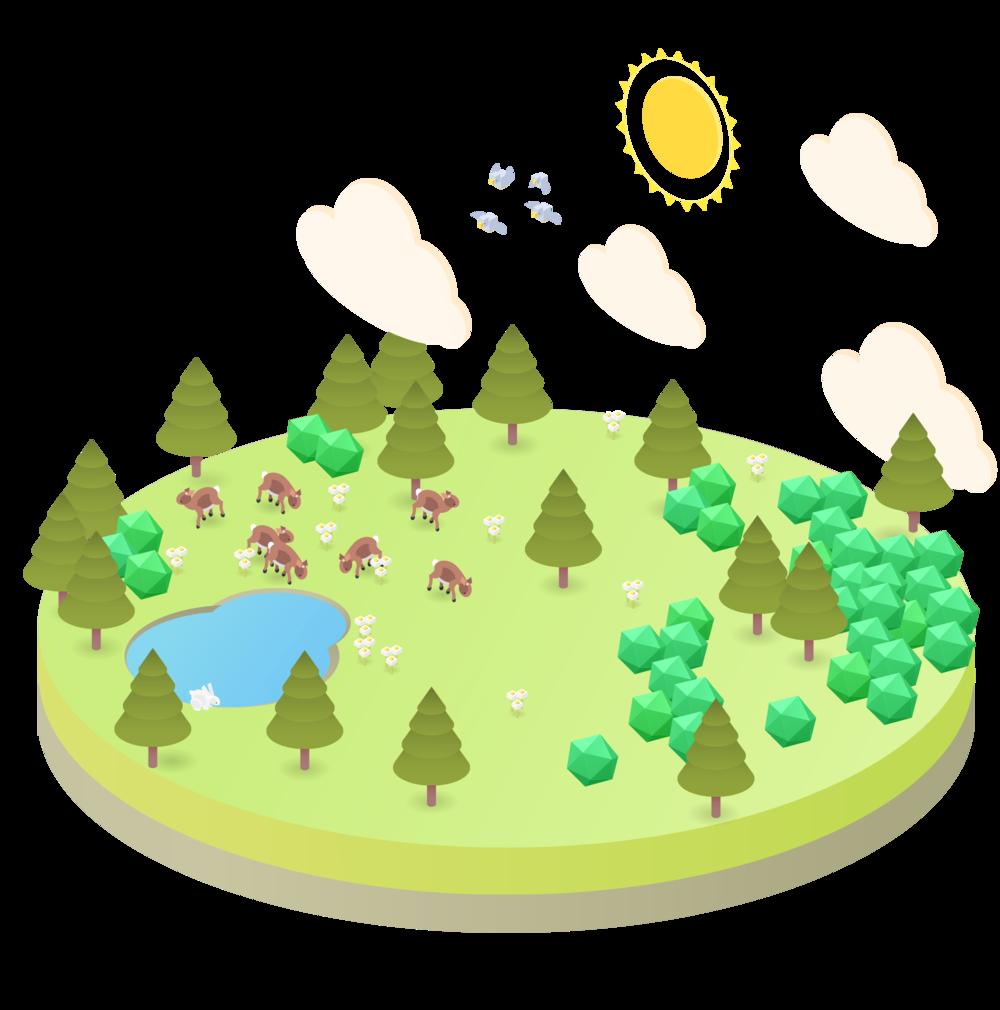 reclaimed-land