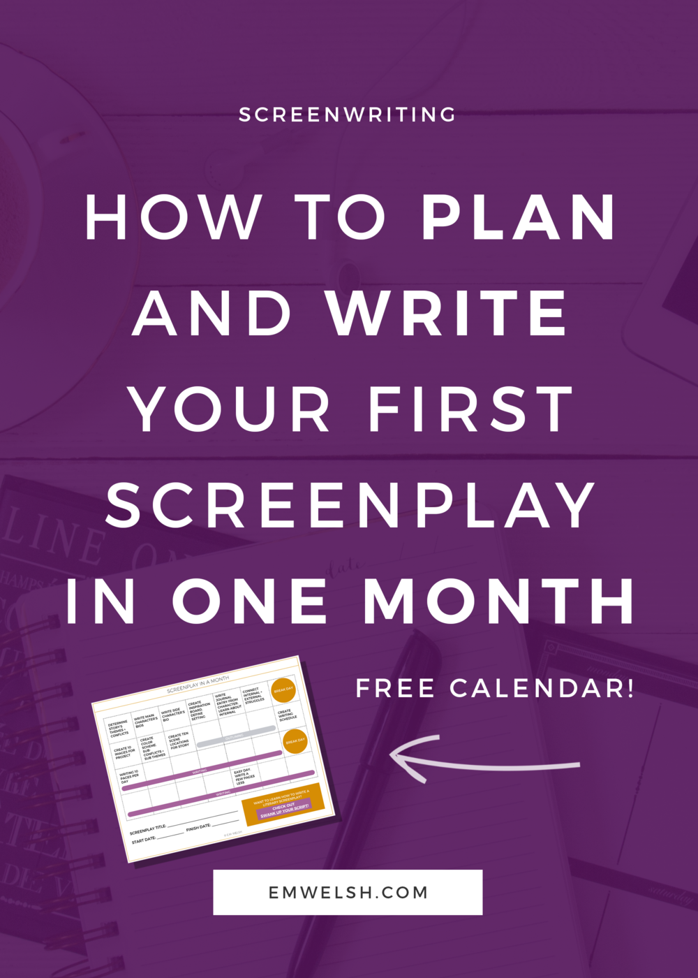 how to plan and write your first screenplay in one month e m welsh