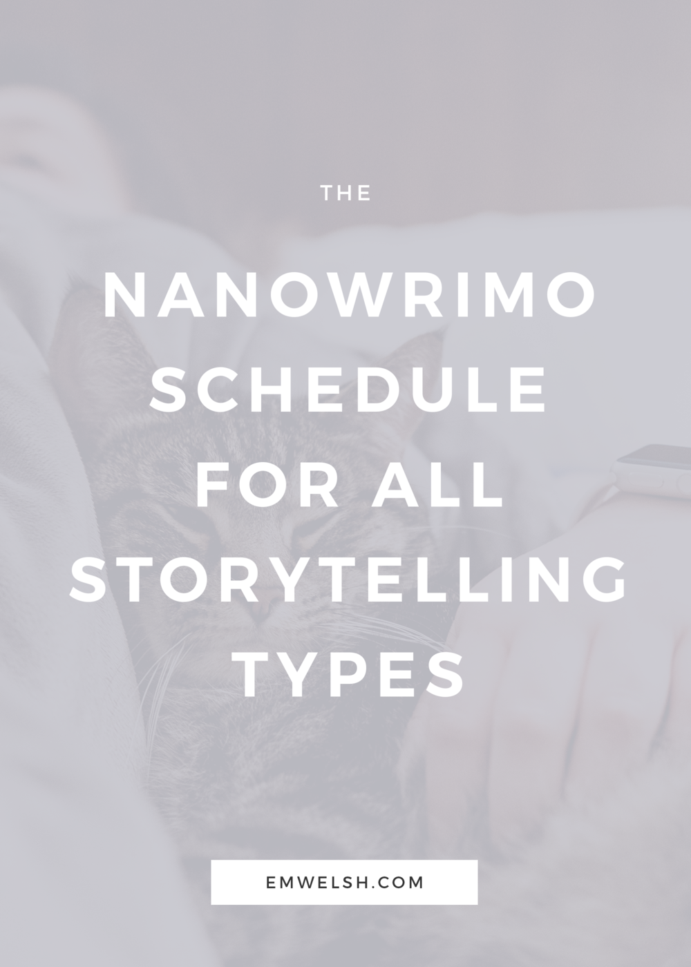 Nanowrimo-schedule-storytelling.png