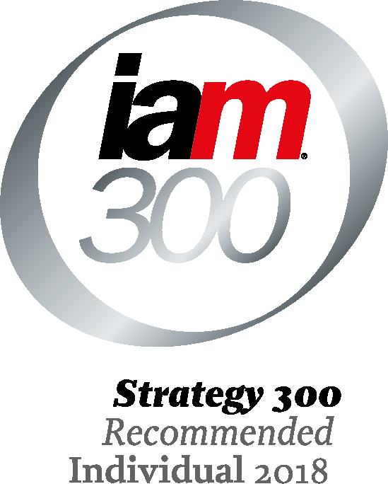 IAM 300 2018 logo