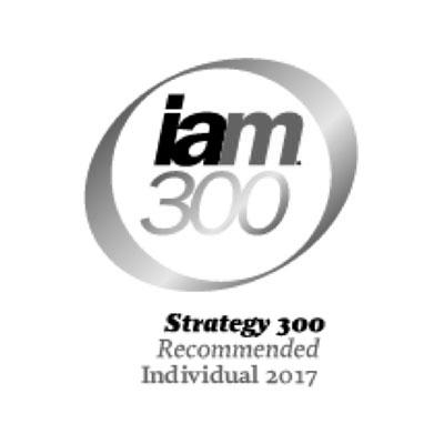 iam300-2017-logo-iceberg-ip.jpg