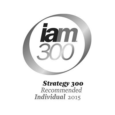 iam300-2015-logo-iceberg-ip.jpg