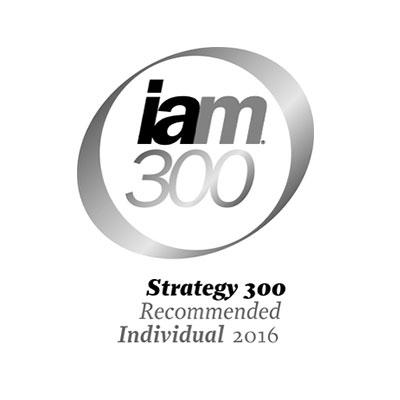 iam300-2016-logo-iceberg-ip.jpg