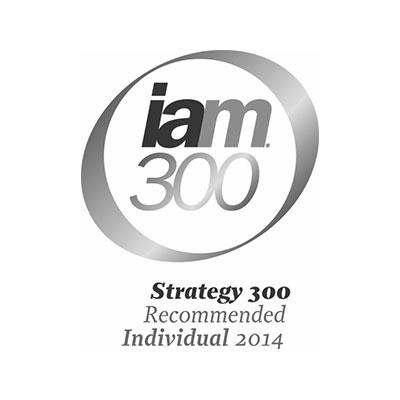 iam300-2014-logo-iceberg-ip.jpg