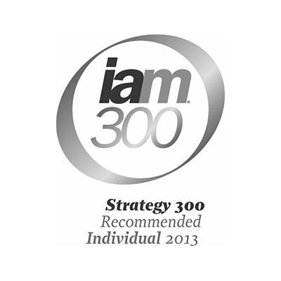 iam300-2013-logo-iceberg-ip.jpg
