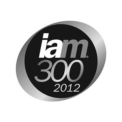 iam300-2012-logo-iceberg-ip.jpg