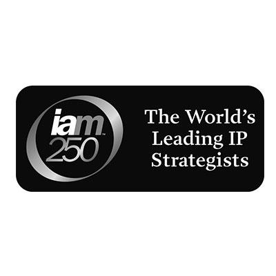 iam250-logo-iceberg-ip.jpg