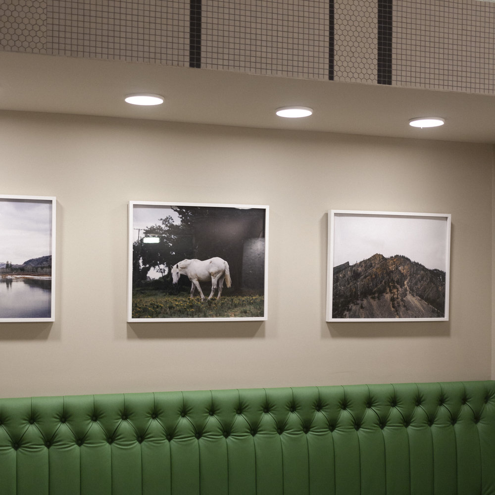 Houston's Work.jpg
