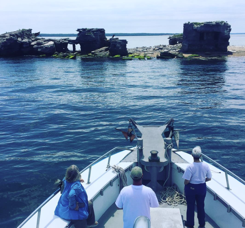 Peconic Cruise Line Seal Watching at The Ruins_cr. Will Lieblein.png