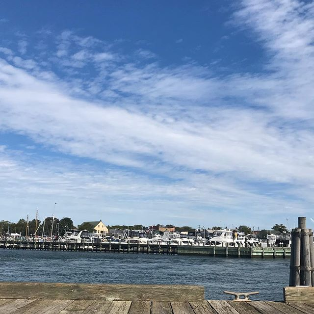 Dock views on this gorgeous Maritime Festival Saturday! Our next cruise is at 2:30. Come aboard! Calendar link in profile.
