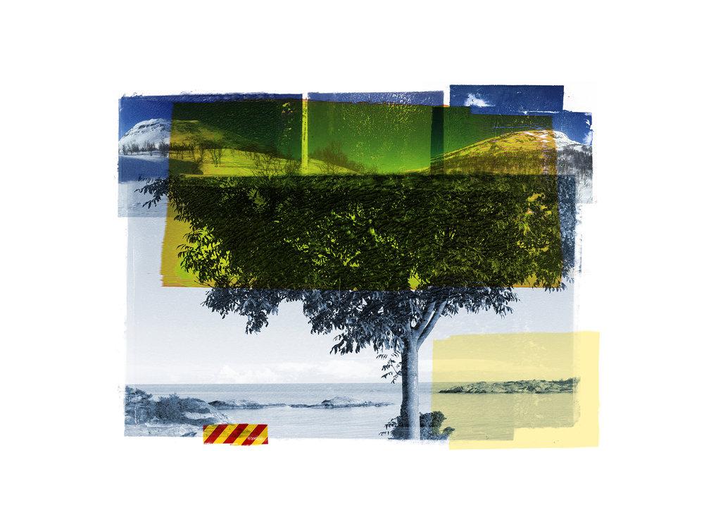 Blue Tree / Reservoir / Yellow   Original Archival UV Pigment Print / BFK Rives 250 gr 35 x 25 cm / 13,7 x 10 in Edition of 50 + 7 Ap Editeur: Per Fronth Studios / Printer Henrik Aunevik  08/2015: