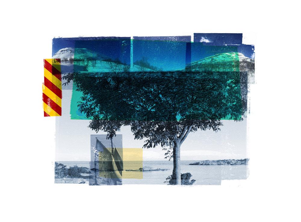 Blue Tree / Reservoir / Cyan   Original Archival UV Pigment Print / BFK Rives 250 gr 35 x 25 cm / 13,7 x 10  in Edition of 50 + 7 Ap Editeur: Per Fronth Studios / Printer Henrik Aunevik  09/2015: