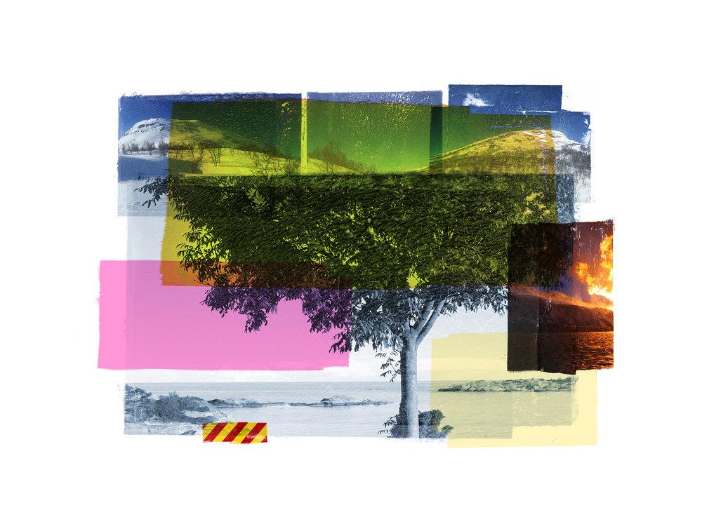 Bluetree / Reservoir / Ritual II  Original Archival UV Pigment Print / BFK Rives 250 gr 56 x 25 cm / 22 x 9,7 in Edition of 50 + 7 Ap Editeur: Per Fronth Studios / Printer Henrik Aunevik  13/2015: