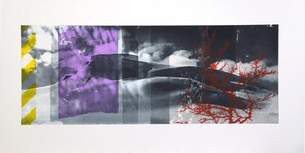 Reservoir / Birch in storm ( Setesdal )  Polymer / Etching / Drypoint 200 x 90 cm / 78,4 x 35,5 in Edition of 45 + 7 Ap Editeur: Per Fronth / Atelje Ole Larsen / Helsingborg  25/2015:
