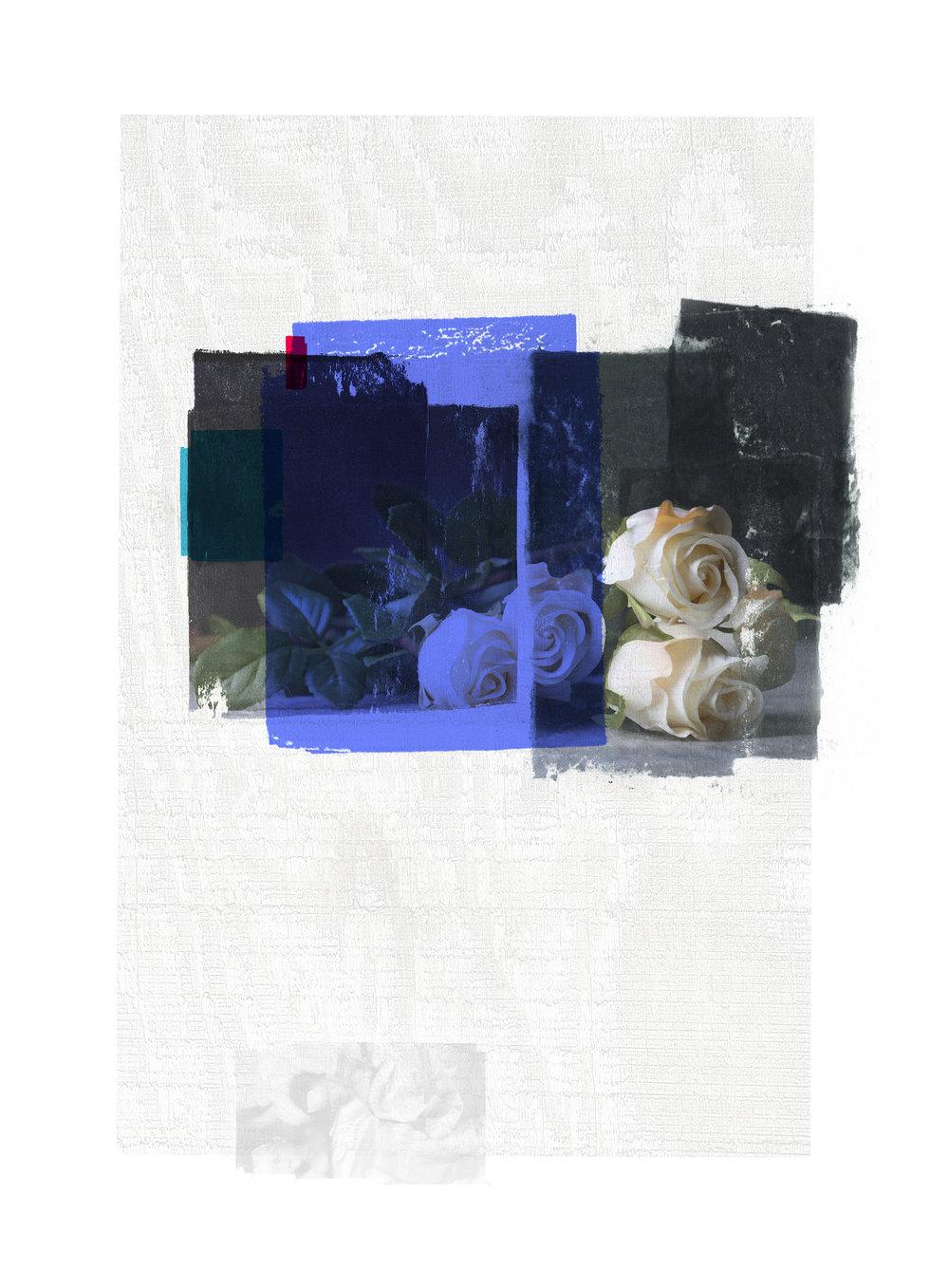 Sacrifice / BlueRose / Eternal Sleep  Original pigment print / BFK rives 250 gr 25 x 35 cm / 13,7 x 10 in Edition of 50 + 7 Ap Editeur: Per Fronth Studios / Henrik Aunevik  10/2014: