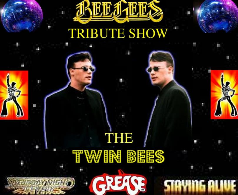 twin bees xsp.co.uk.jpg