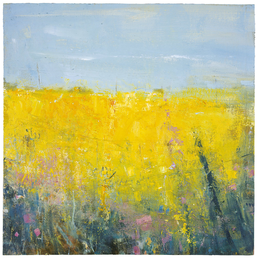 Cornish Spring.  Oil on board. 45 x 45cm  Sold