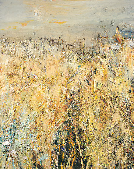 Cornfield.  Oil on board. 100 x 80cm  NFS