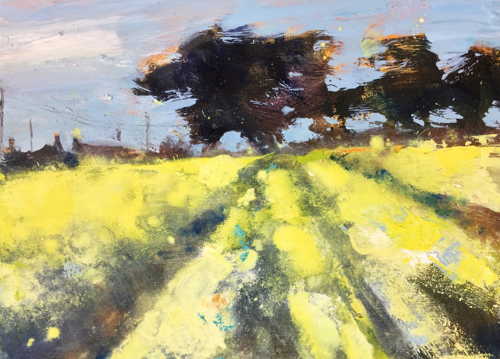 Yellow Fields, West Cornwall.  22 x 30cm. Oil on board  Sold