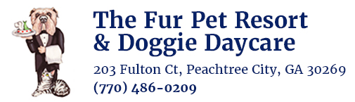 The Fur Pet Resort & Doggie Daycare