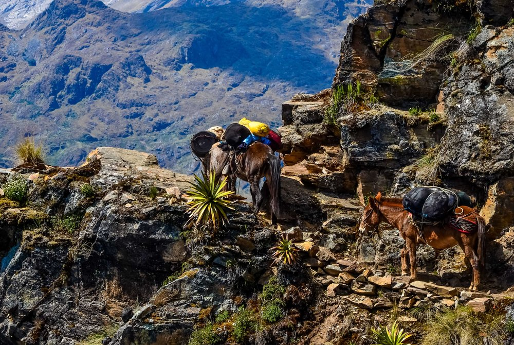 Hiking Peru   Cusco & Inca Trail to Machu Picchu    Inquire
