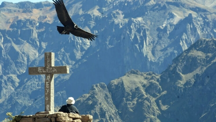 Cultural Peru   Arequipa & Colca Canyon    Book This Tour