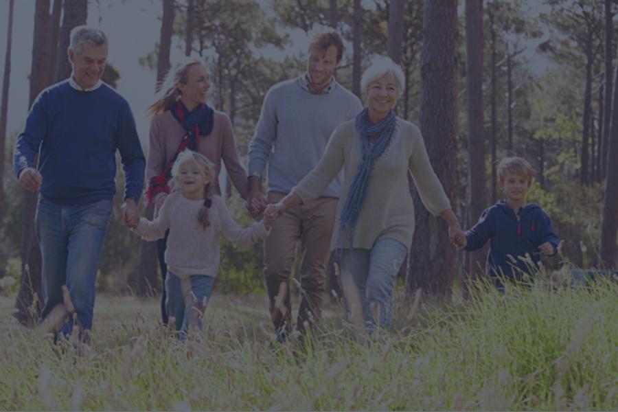 Family Governance -