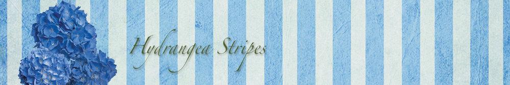 Hydrangea Stripes