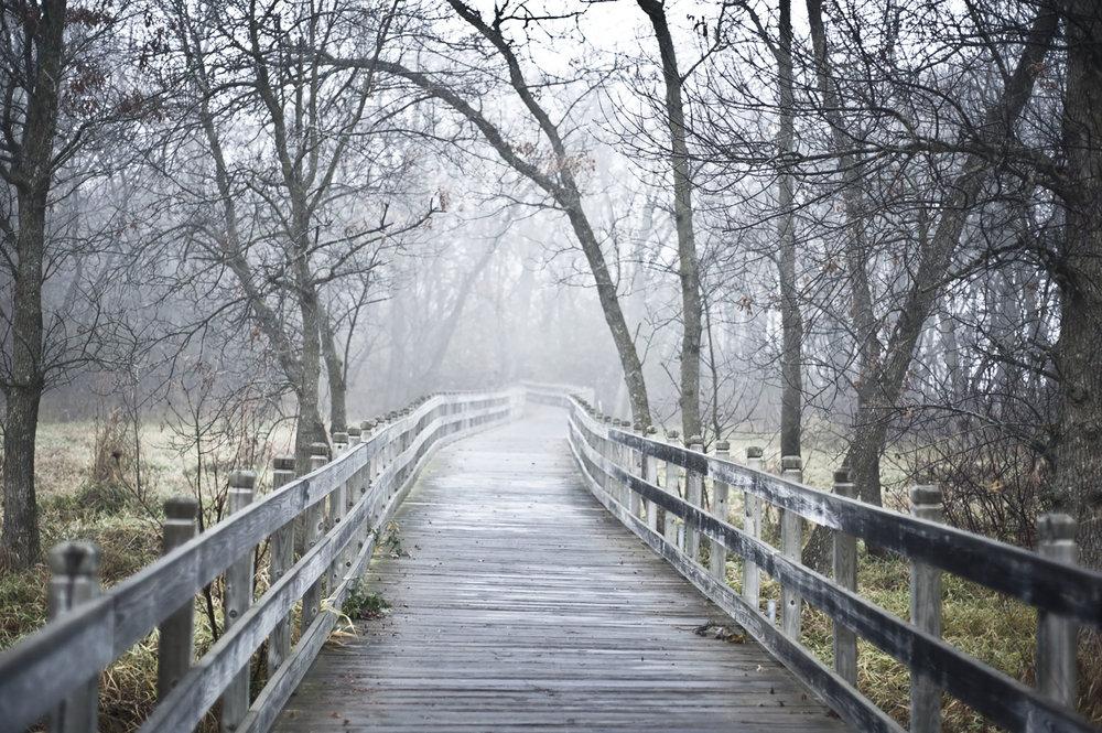 bridge5_1.jpg