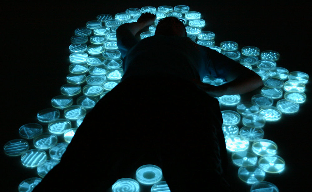"""Body,"" photograph by the light of bioluminescent bacteria"