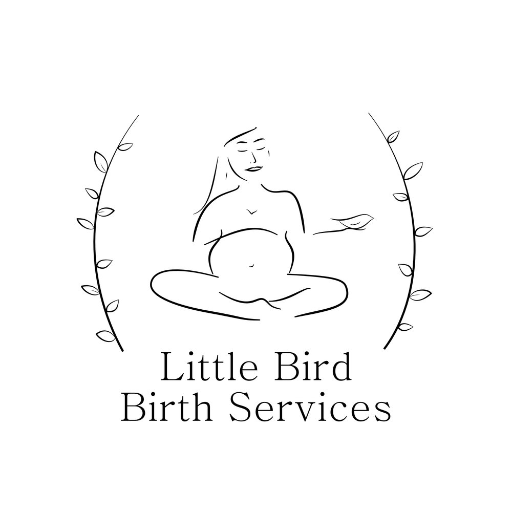 Little Bird Birth Services Logo.jpg
