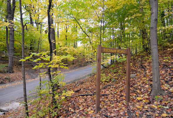 Don Valley Trails   Year Round   In the center of the city lies more than 11km of trails that run near the city's Don Valley Parkway.  Pedestrians and cyclists can weave through the various tree-lined trains, offering a bit of escape from the bustle of the city.  City-hikers are treated to a multitude of environments, from  narrow ravines to wide-open spaces, even being treated to the picturesque Crothers Woods. Here, locals are able to view the regions local flora and fauna.  The trails are open year long, but are not maintained property during the winter, so once spring rolls around the become a city-hikers dreams!