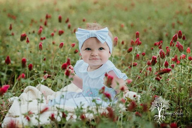 A field of wildflowers right beside the road. How adorable is the sweet girl?  #dontblinkphotography #charlestonphotographer #southcaronlinaphotographer #northcarolinaphotographer #charlottephotographer #beaufortphotographer #savannahphotographer #smalpresets #thesnapsociety #thesincerestoryteller #clickinmoms #momswithcameras #babiesofinstagram