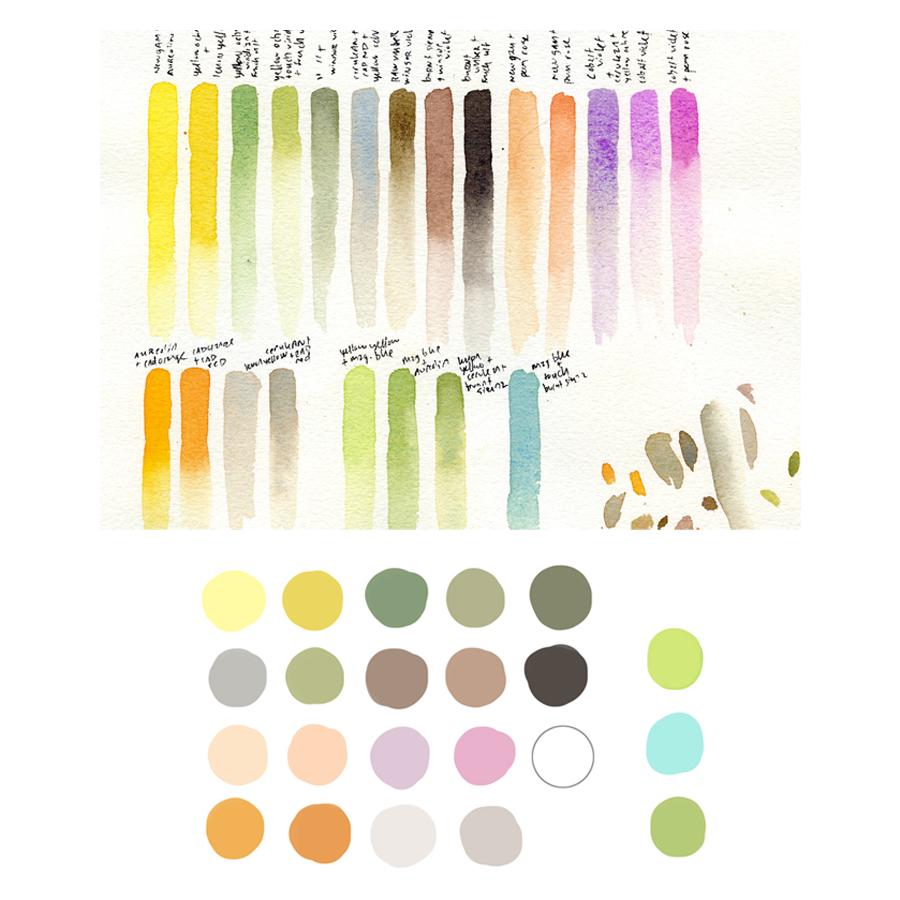 colorstudies-cohenillustration-danacohen