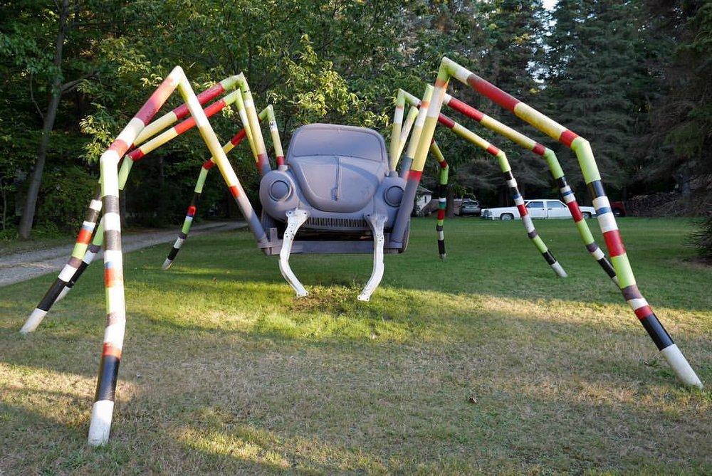 SpiderEriePA.jpg
