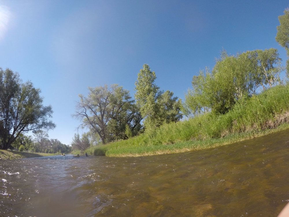 Many healthy riparian areas were observed and locations were noted along the river.