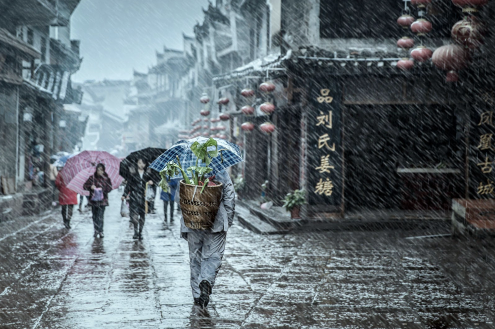 SCB. In the heavy rain. Dec '16. Fenghuang, China.png