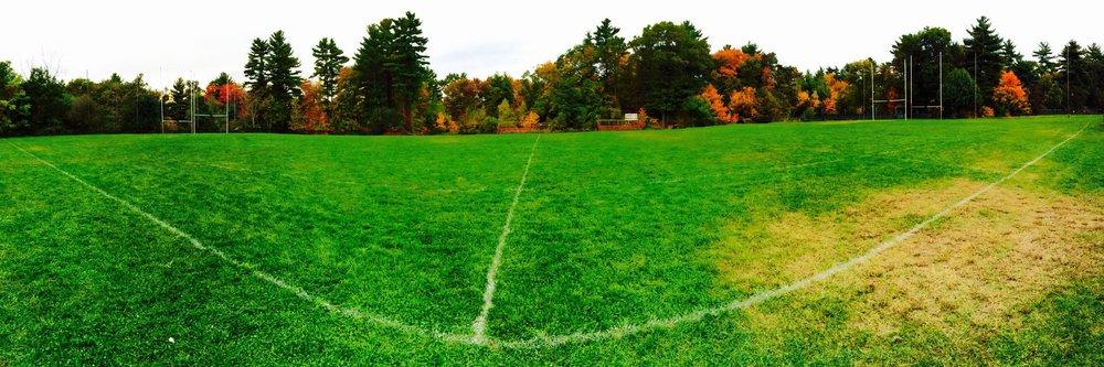 Canton pitch.jpg