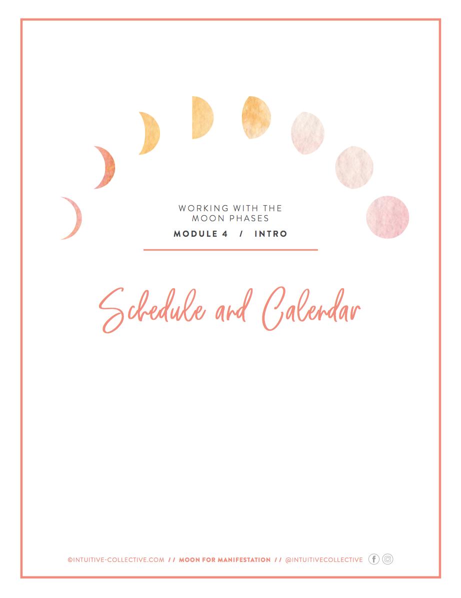 Module 4_Schedule.png