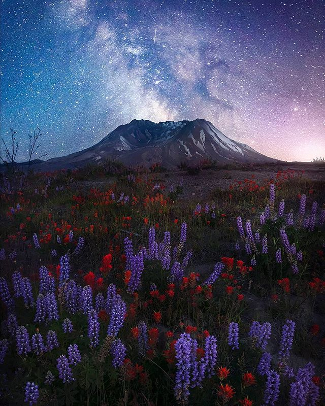 """Cosmic Eruption"" Johnson's Ridge, WA  Its become a summer tradition to head up to Mt St Helens every year and lay under the stars for the better portion of the night. The stars have always fascinated me and its incredible what you are able to pick up with a 25 second exposure. Currently my favorite thing in the night sky is the ""Dark Horse Nebula,"" anyone see it? The outline of a horse is visible just to the right of the core of the Milky Way. Ever since someone pointed that out to me I cant help but see it in the night sky!  Thanks for looking! * * * * * #superhubs #pnwonderland #splendid_mountains #mountainworld #washingtonexplored #LiveWashington  #ic_longexpo #westcoast_exposures #longexpohunter #loves_longexpo"