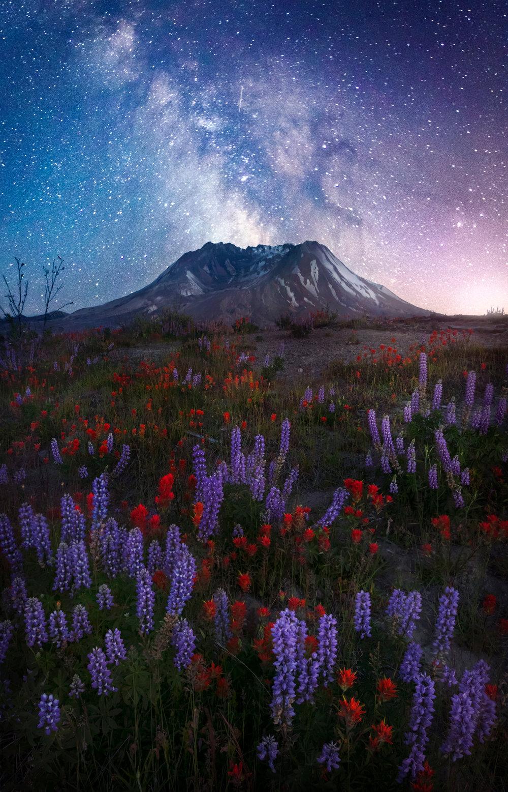 Mt St Helens Stars Final (Print Version).jpg